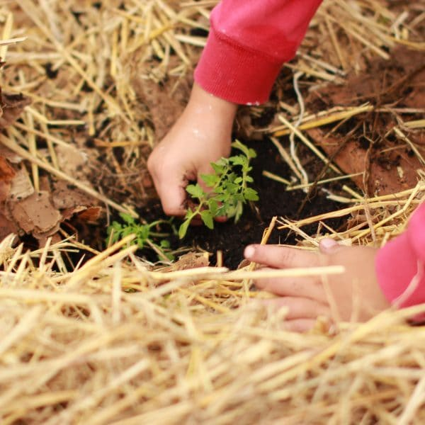 Sostenere la tutela dell'ambiente